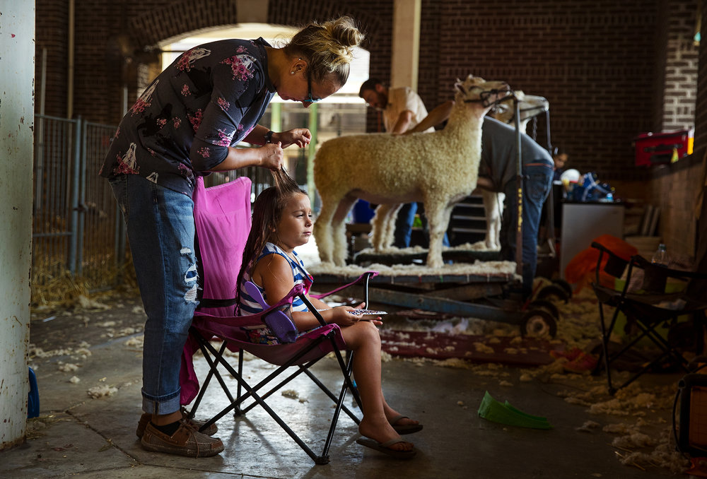 Meghan Meyer brushes her daughter Addison's hair as she eats her breakfast while her dad and uncle shear sheep in the Sheep Barn at the Illinois State Fair Friday, Aug. 17, 2018. [Ted Schurter/The State Journal-Register]
