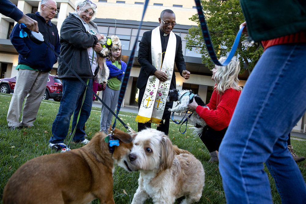 Fr. Fredrick Mbiere, the chaplain at HSHS St. John's Hospital, reaches out to pick up Kelsey Edmonds' Yorkiepoo, Wrigley, after he conducted a ceremony to bless pets in honor of the Feast of St. Francis of Assisi Thursday, Oct. 11, 2018 on the lawn at HSHS St. JohnÕs Pavilion Springfield, Ill. The Italian Catholic Friar is remembered as the patron saint of animals. [Rich Saal/The State Journal-Register]