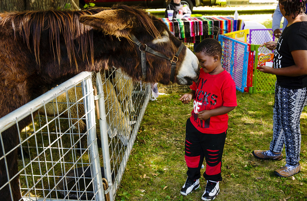 Dryfus, a Poitou donkey, leans over the fence to investigate the treats Zy'mir Steward has in his hands during The Outlet's fifth annual Bridging the Gap BBQ at Jaycee Park Saturday, Sept. 22, 2018. [Ted Schurter/The State Journal-Register]