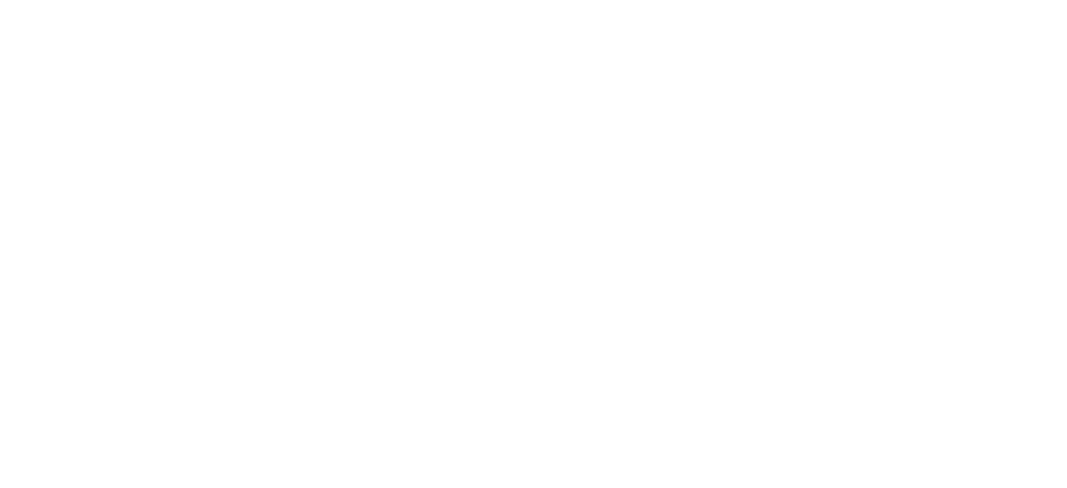 BMeX Restaurant Group Inc.
