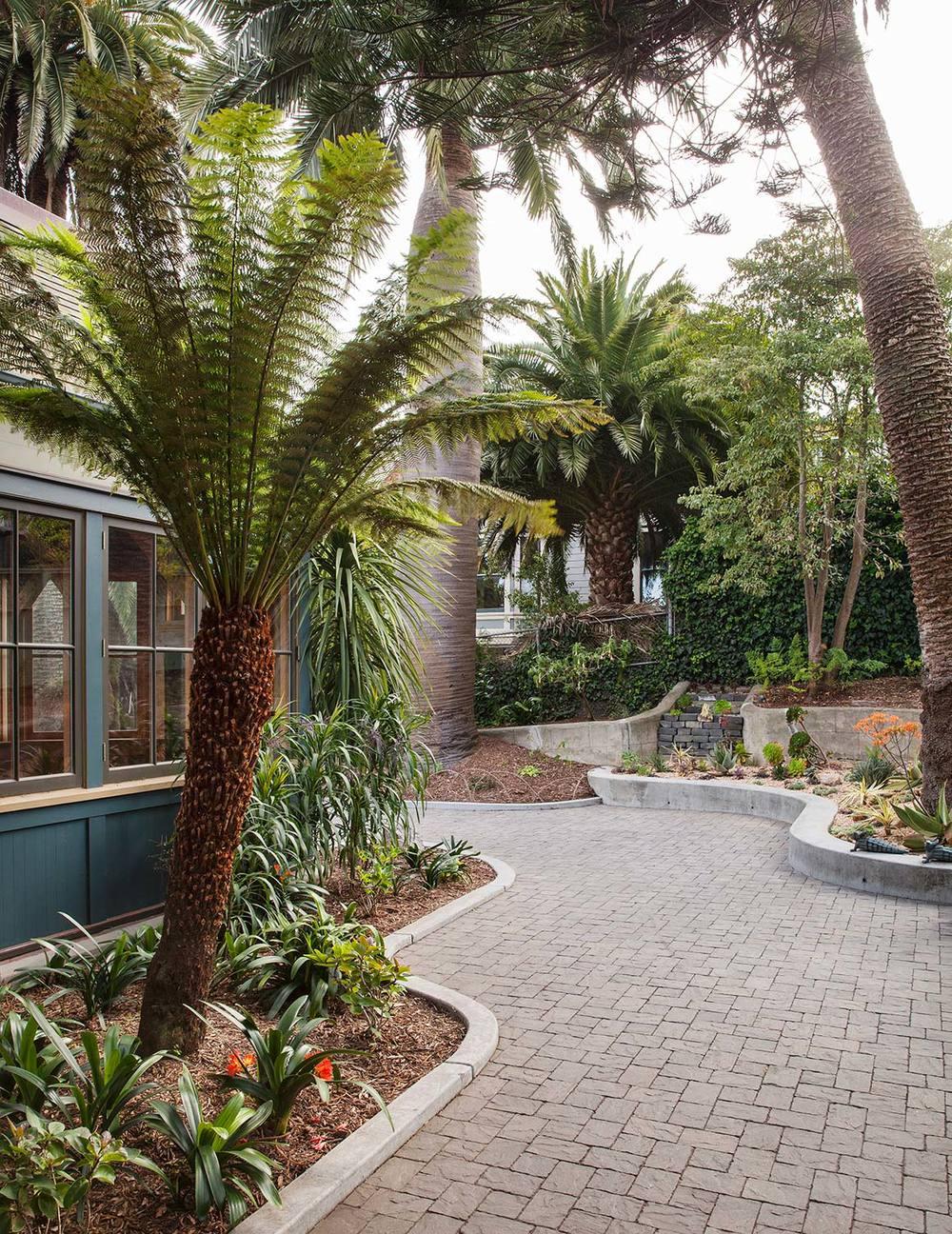 Arterra Landscape Architects  -  Sunnyside Conservatory, SF