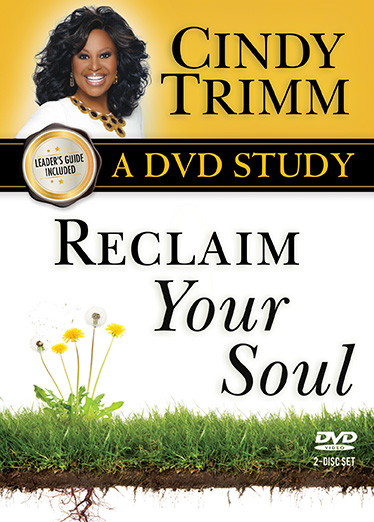 Reclaim Your Soul DVD Study and Leader's Guide