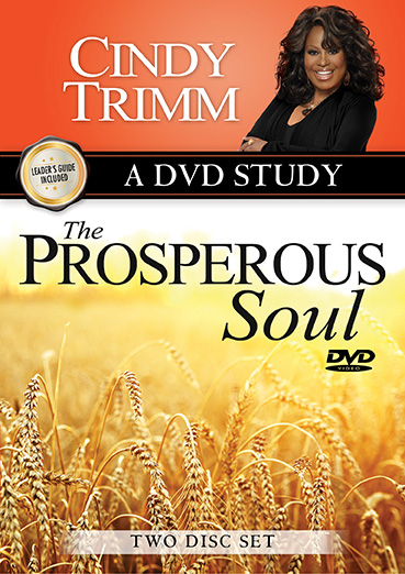 The Prosperous Soul DVD Study and Leader's Guide
