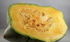 Roasted Blue Hubbard Squash