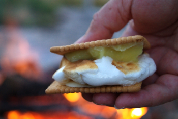 Lemon Meringue Pie, Gourmet S'more