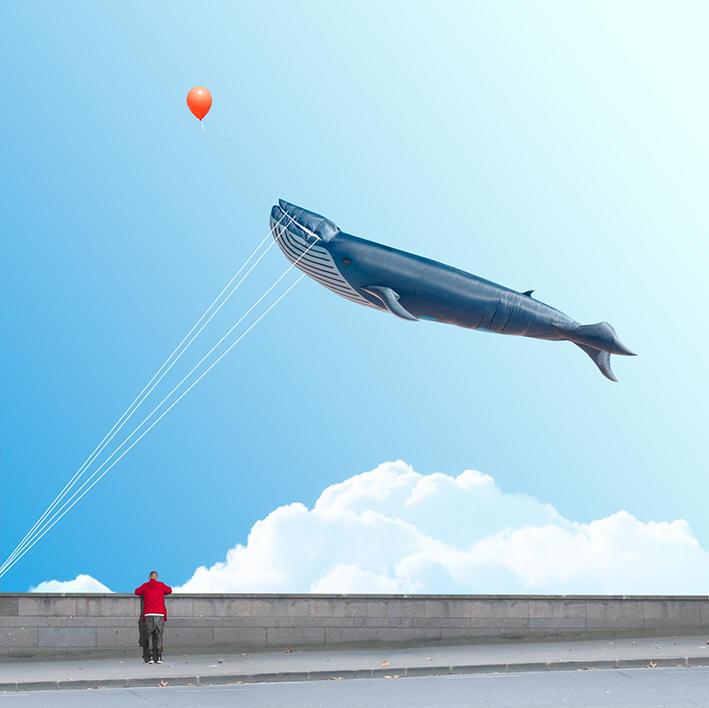 whale in the sky.jpg