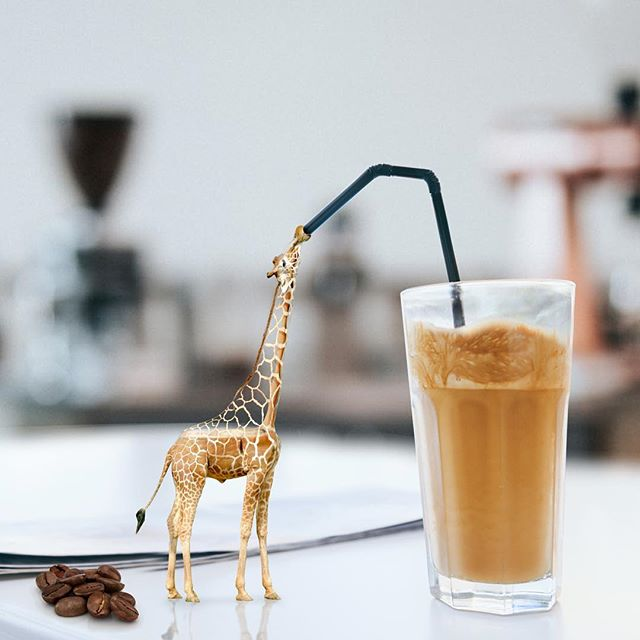 🥤🦒💩 🙊 #thecreativeshots #art #arte #design #graphicdesign #edit_grams #vsco #conceptual #thegraphicspr0ject #manipulationclan #theuniversalart #edit_perfection #creartmood  #agameoftones #instacool #instadaily #artistsoninstagram #giraffe #coffee #igmasters #enterimagination #thecreatorclass #photoshop #artofvisuals