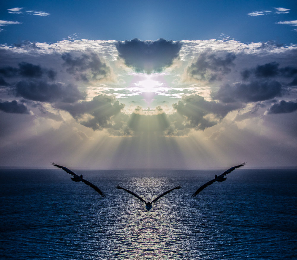 Pelicans Soaring to the Mother Ship    ,       Not photocomposition, just a single mirror flip    2016  medium  dimensions   CLICK HERE TO ORDER OR INQUIRE