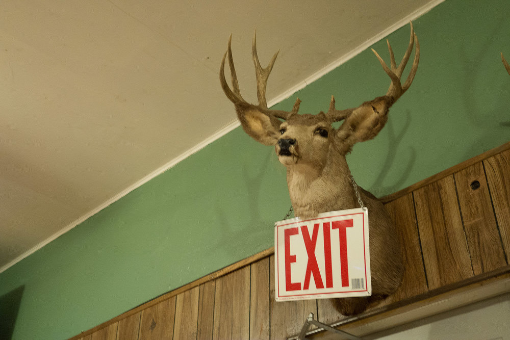 Untitled Mounted Deer and Exit Sign  2015, DIgital Capture Signed Limited Edition of 20    ORDER OR INQUIRE