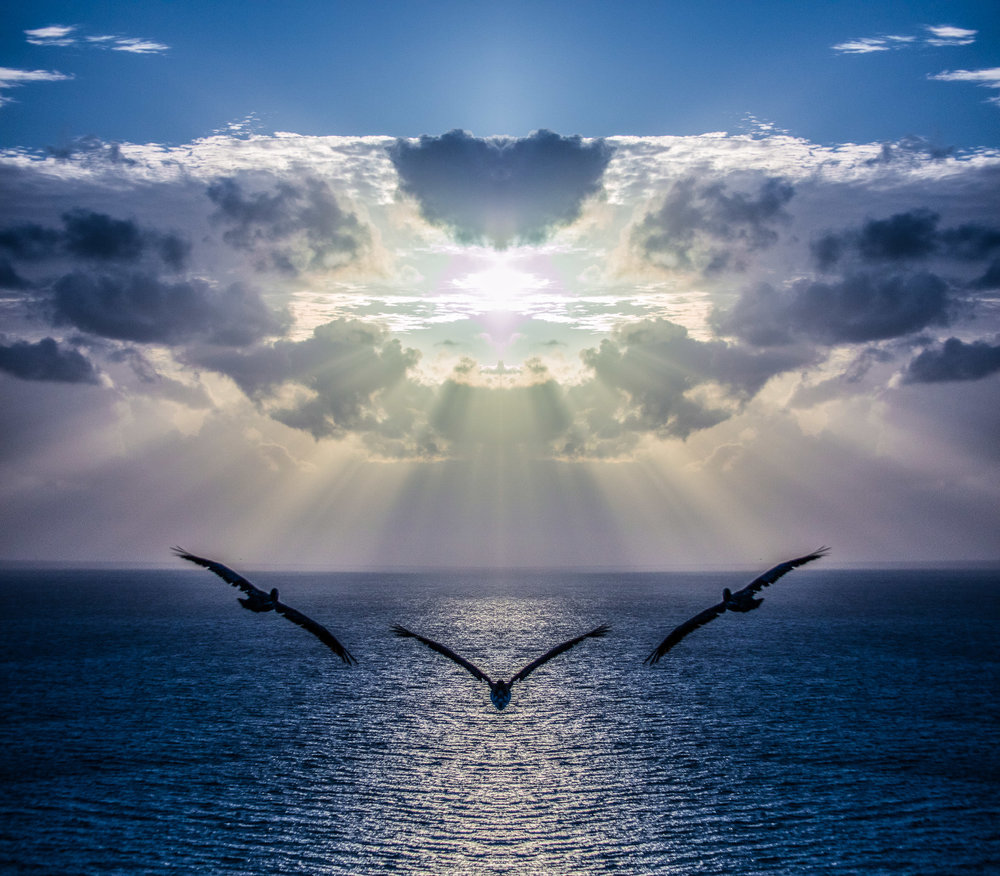 Pelicans soaring their way to the Mother Ship.  No compositing here, just a single mirror flip.  2016, Signed Limited Edition of 20   ORDER OR INQUIRE