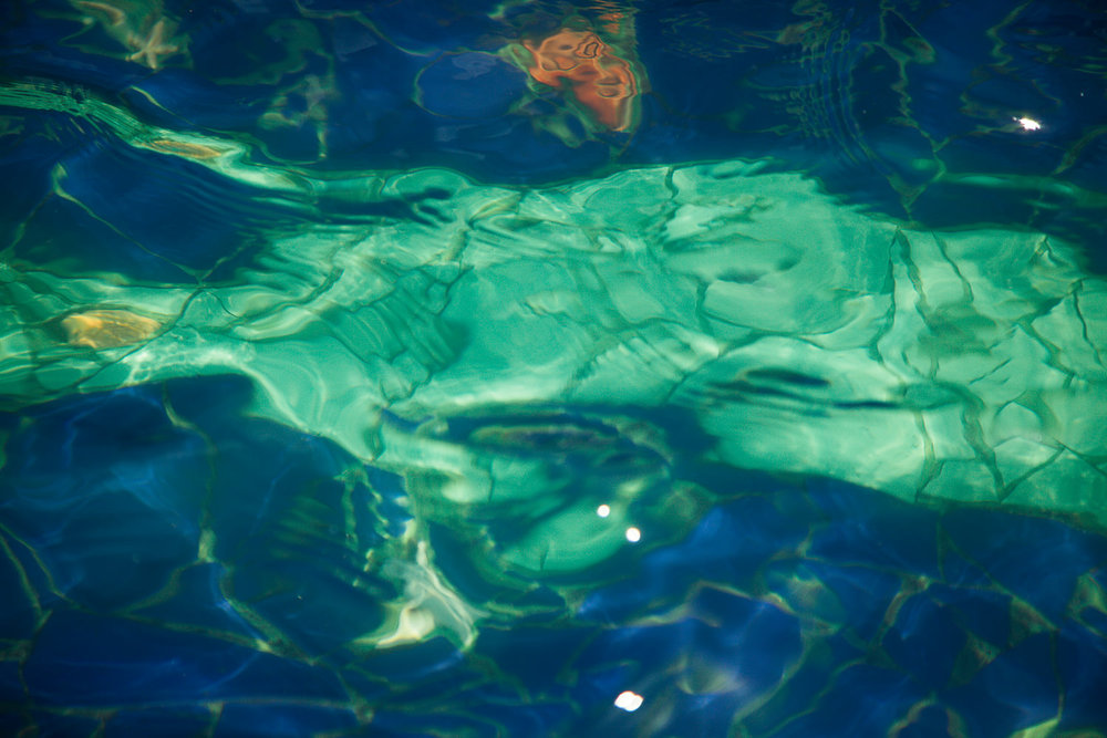 Accidental Venus with Goiter and Goldfish — Installation  2012 in-camera Abstract  Signed Limited Edition of 20   ORDER OR INQUIRE