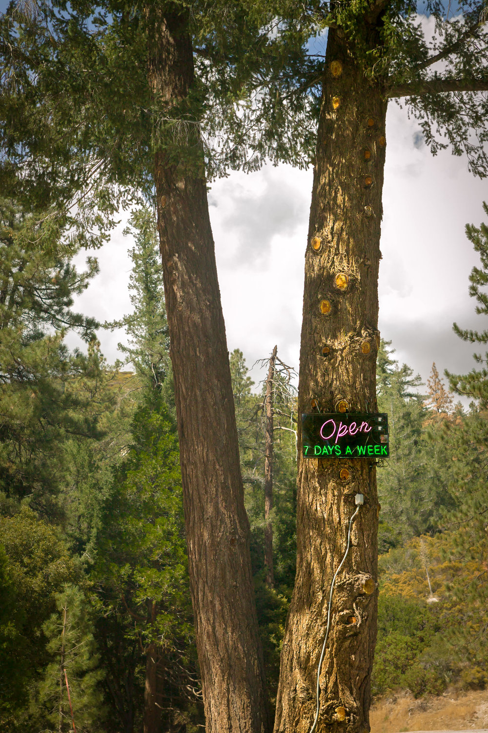 Open 7 Days a Week.  2003, Angeles Forest, California,Digital Image. Signed Limited Edition of 20   ORDER OR INQUIRE