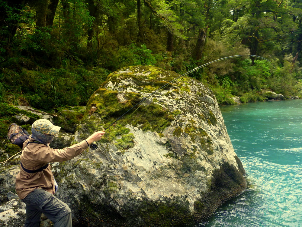 Fly fishing New Zealand/Haast region of the South Island of New Zealand