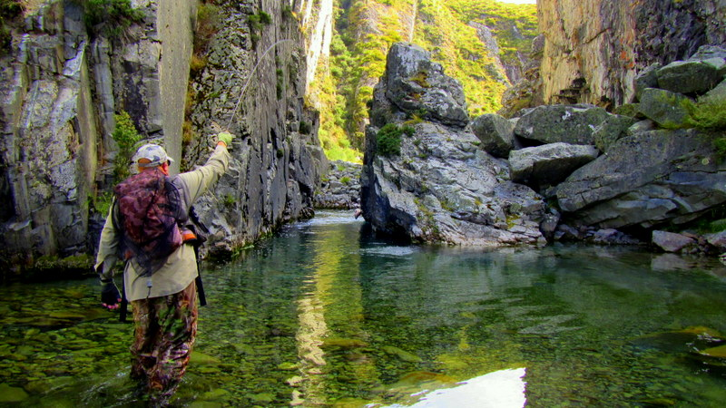 Dry fly fishing in the South Island of New Zealand for trophy brown and rainbow trout.