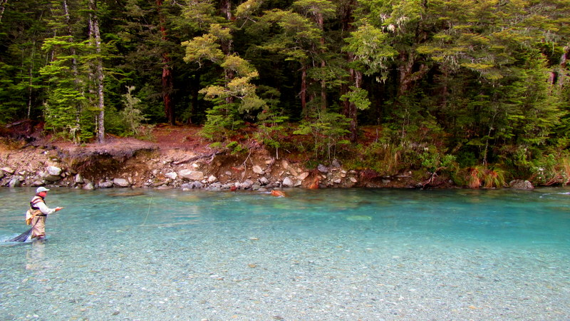 Fly fishing Queenstown for trophy brown and rainbow trout.