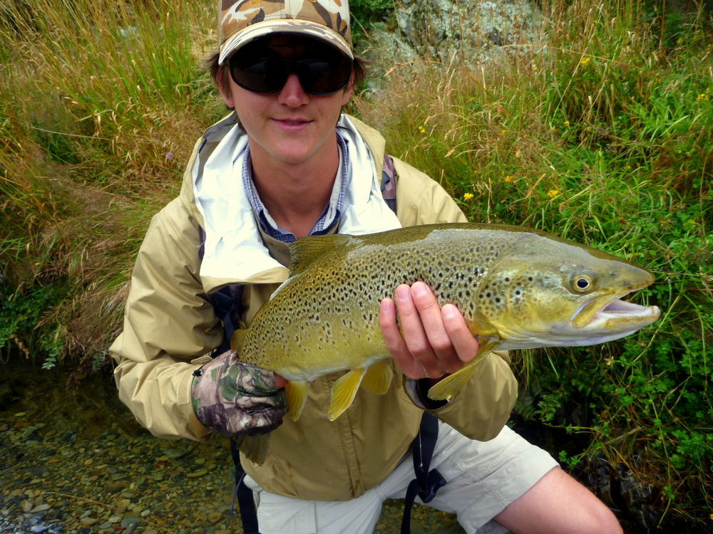 New Zealand trout fishing in the Southland region