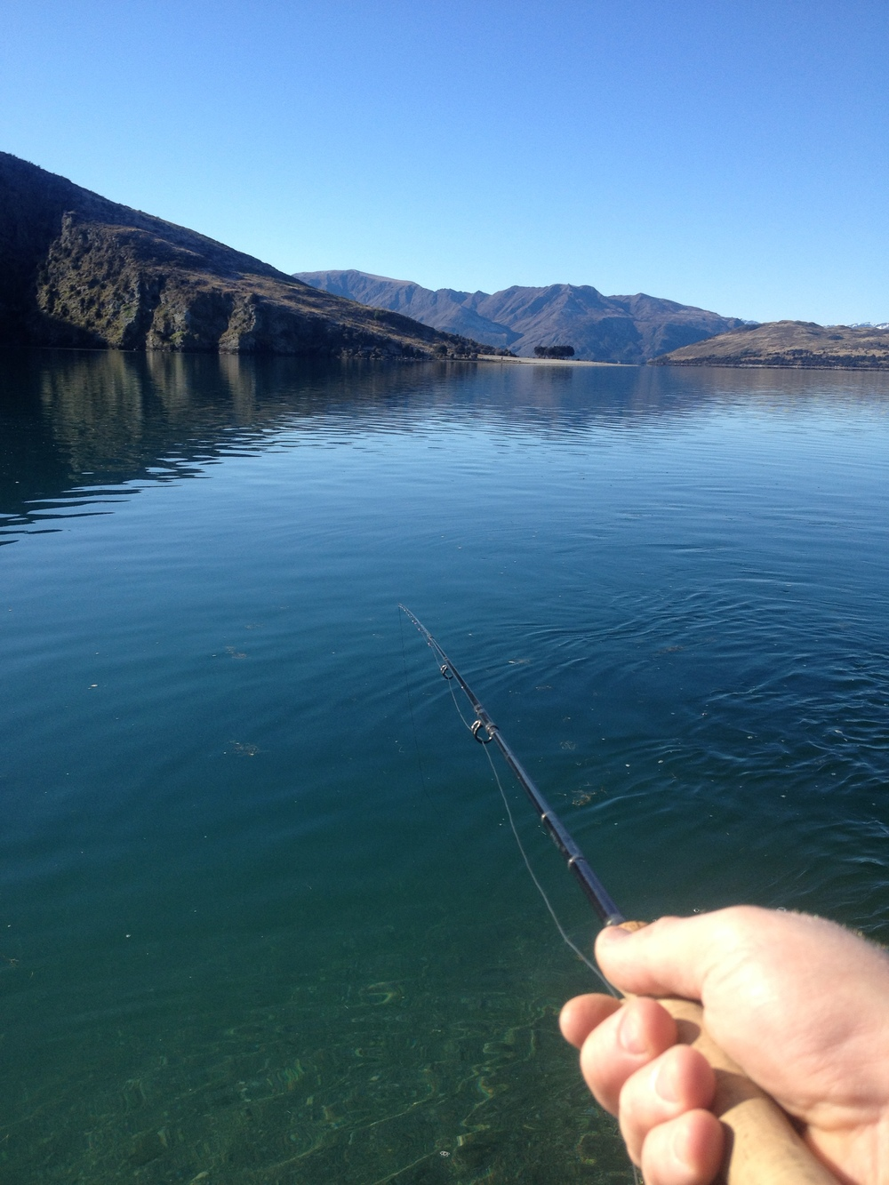fly fishing wanaka
