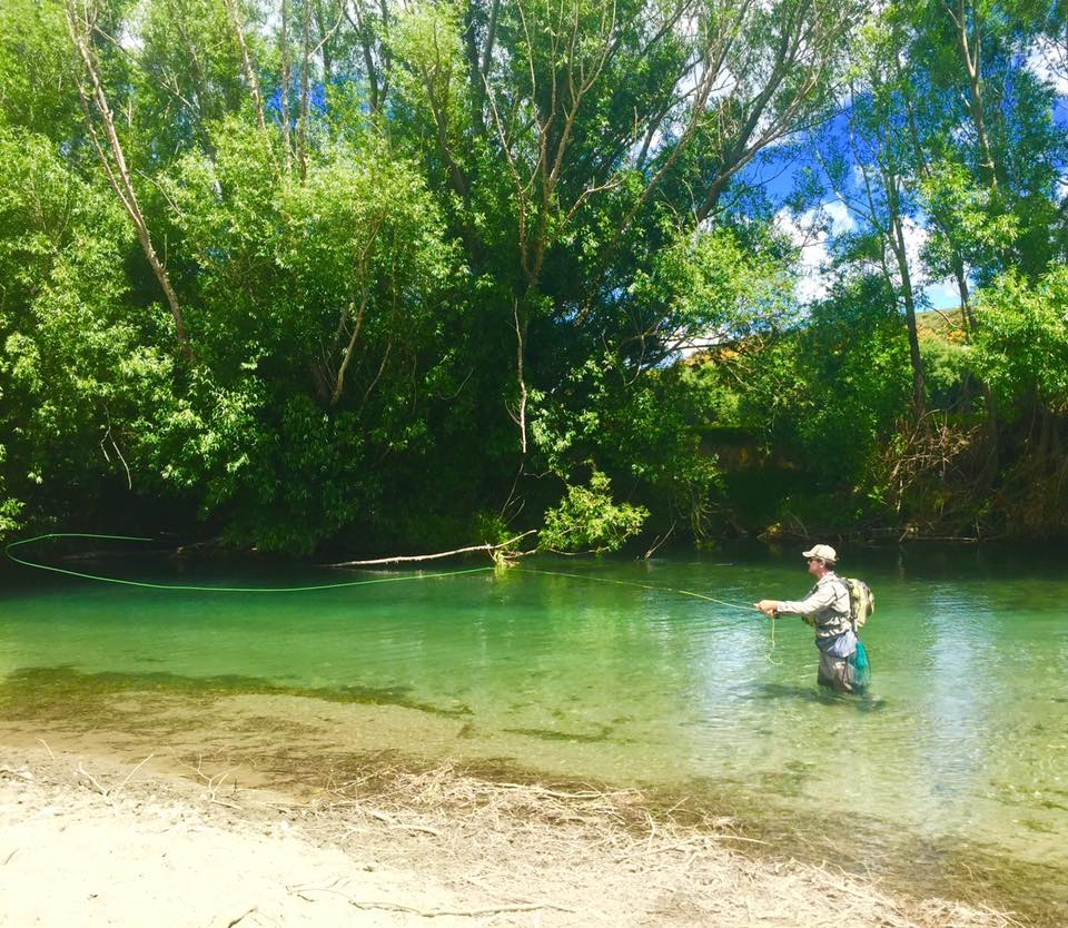 Fly fishing new zealand an early season report 2015 16 for Fly fishing news