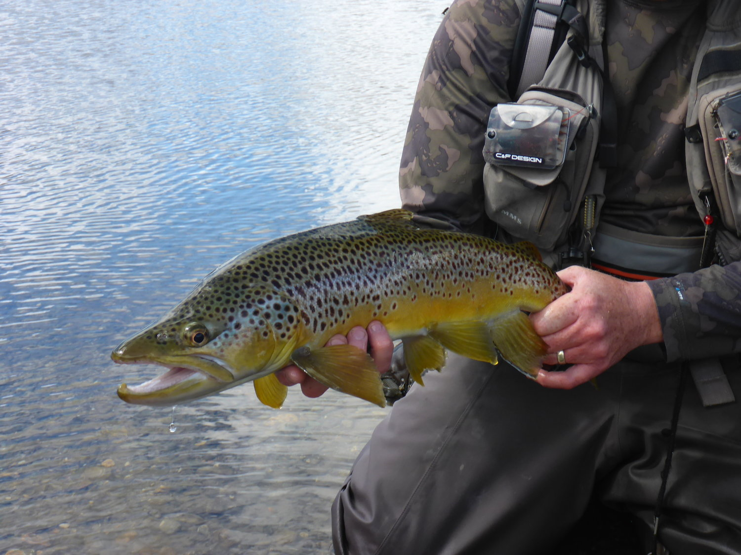 south island fly fishing guides trout fishing south island nz