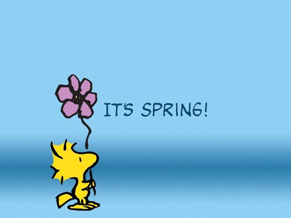 162309-It-s-Spring.jpg