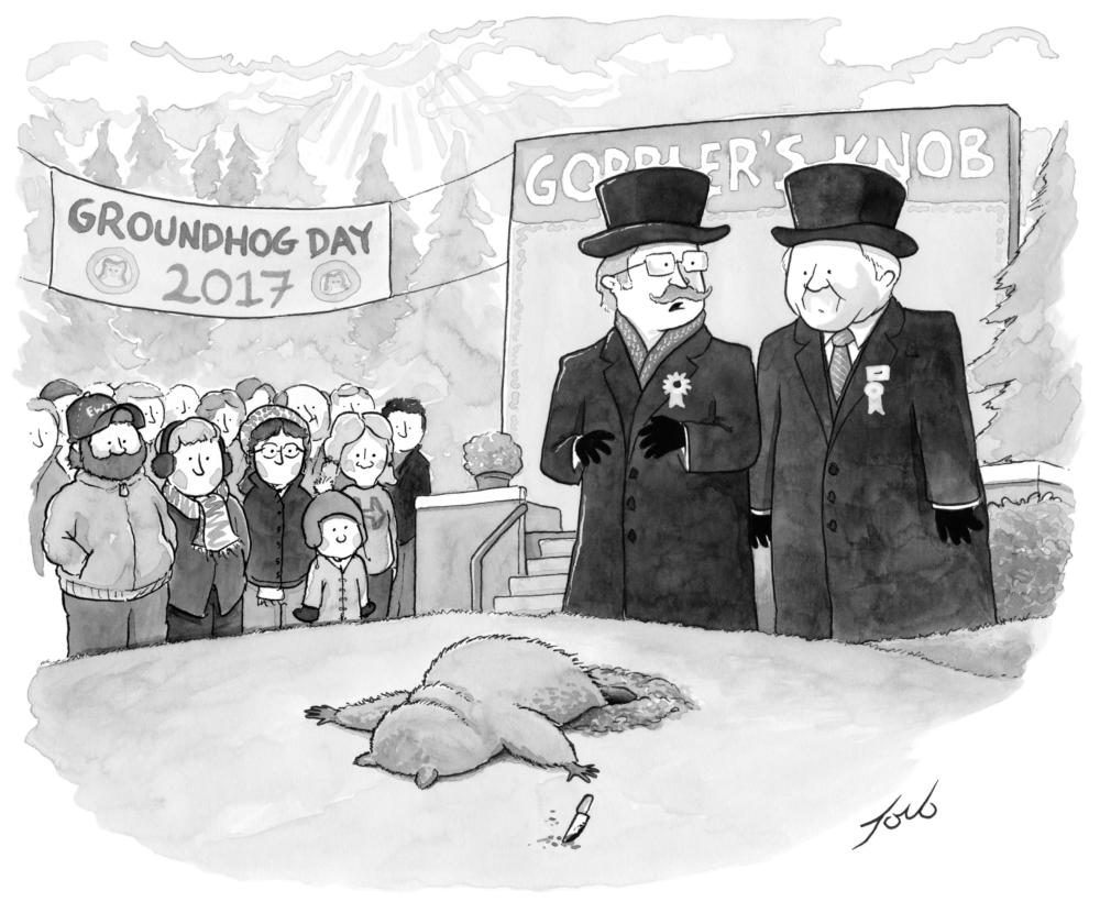 Tom Toro, The New Yorker