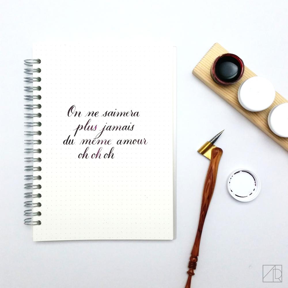 On Ne S'aimera Plus Jamais by Larusso