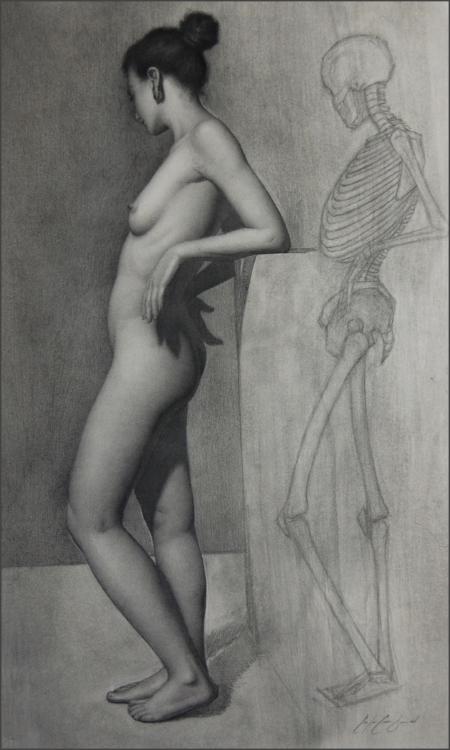Anatomy Study of Marina