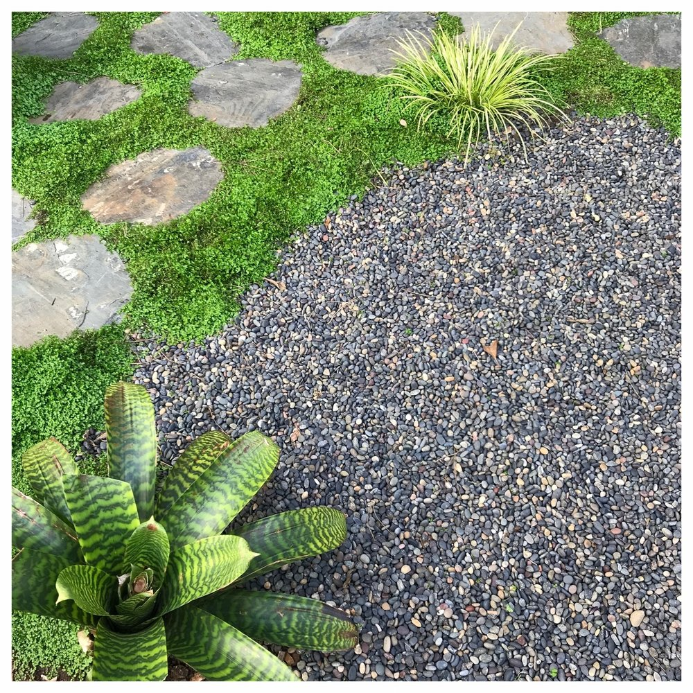 Outdoor living in Cole Valley by Collecting Flowers | San Francisco Bay Area Custom Garden Design
