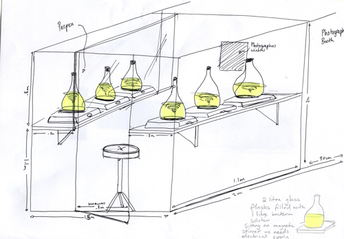 Sketch of 'Photograph booth' lit by 10litres of Photobacterium phosphoreum