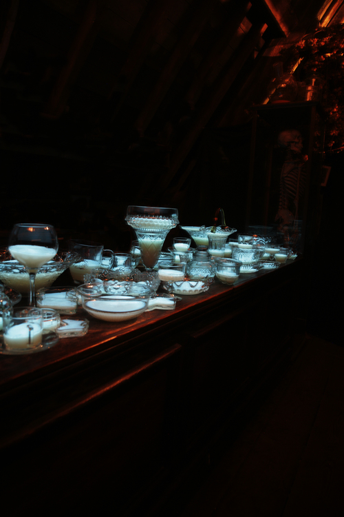 teacups2ZS9L4483.jpg