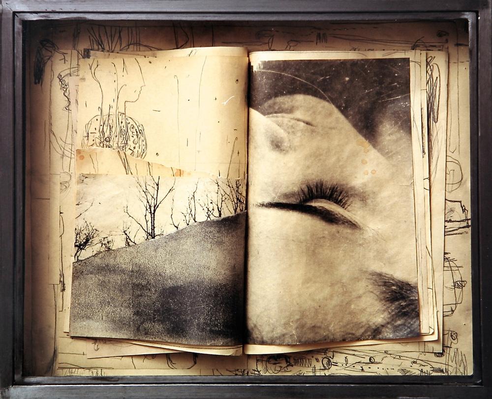 Senza titolo, 2000  Tecnica mista ed emulsione fotografica su carta, ferro, vetro  cm.52 x 64