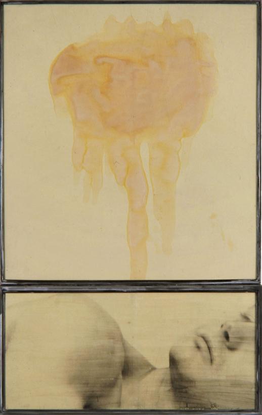 Senza titolo 1992  emulsione fotografica e gommalacca su carta incollata su legno, ferro e vetro  Dittico, cm 187 x 117