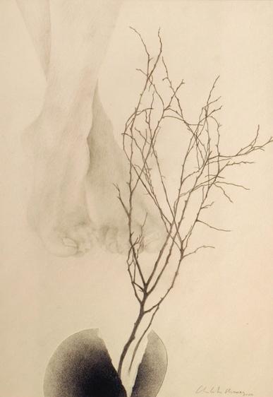 Senza titolo, 2004  grafite e pastello su carta  cm. 50 x 35