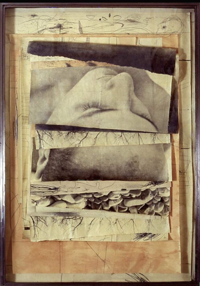 Senza titolo, 2000  Tecnica mista ed emulsione fotografica su carta, ferro, vetro  cm.184 x 129
