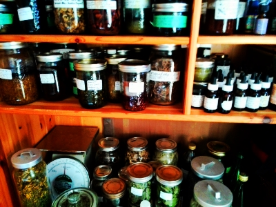 Tinctures, Oils, Salves, Glycerites, Tea Blends, Dried Herbs.