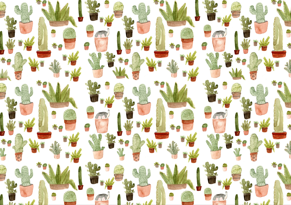 "My piece ""Cacti"" was selected for the 2014   Society of illustrators Student Scholarship Show  . This is pretty accurate since I try to fit as many plants into a small new york apartment as I possible can!"