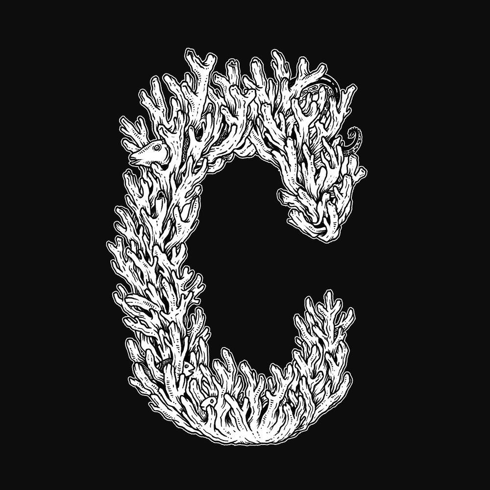 C_01.2-web.jpg