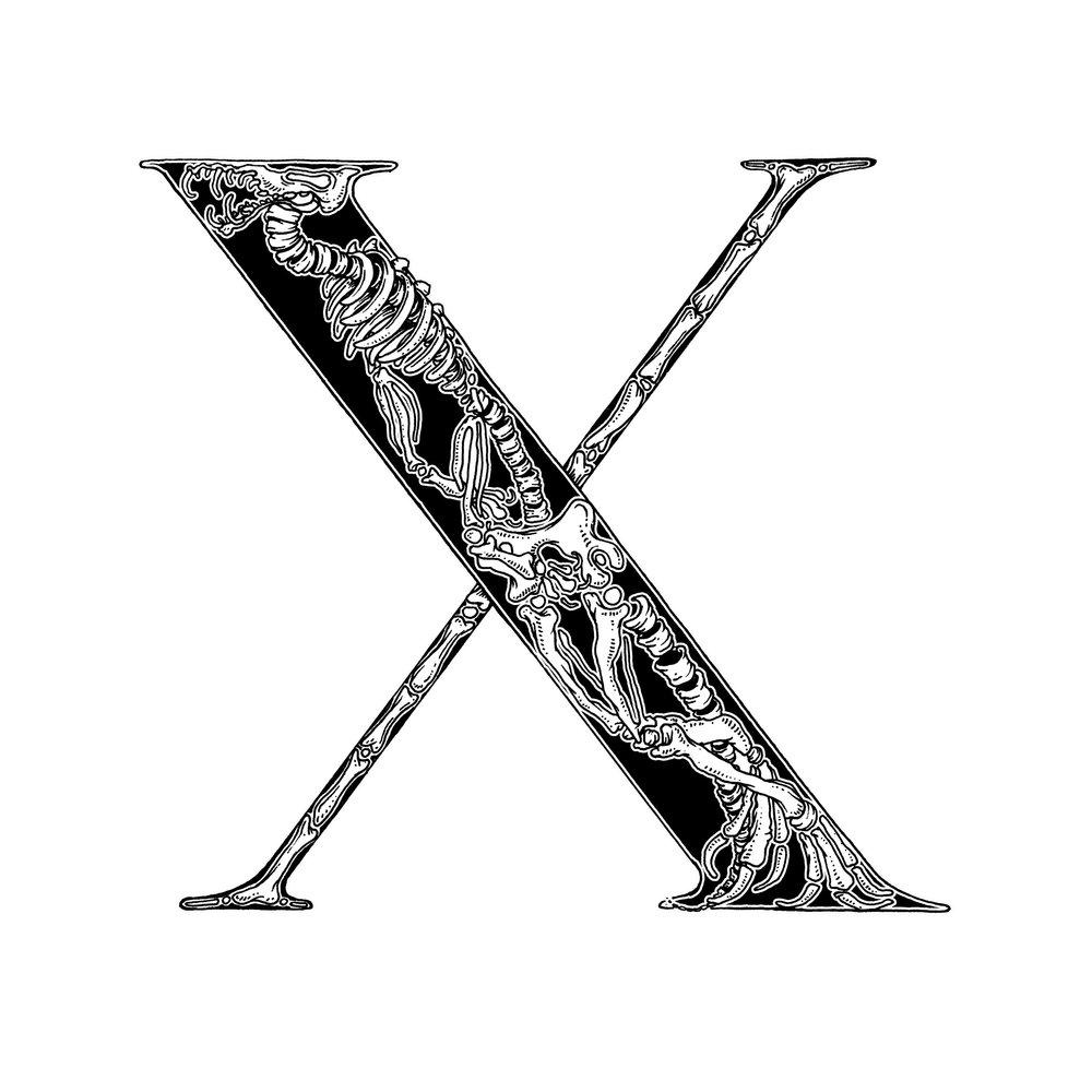 X_03-web.jpg