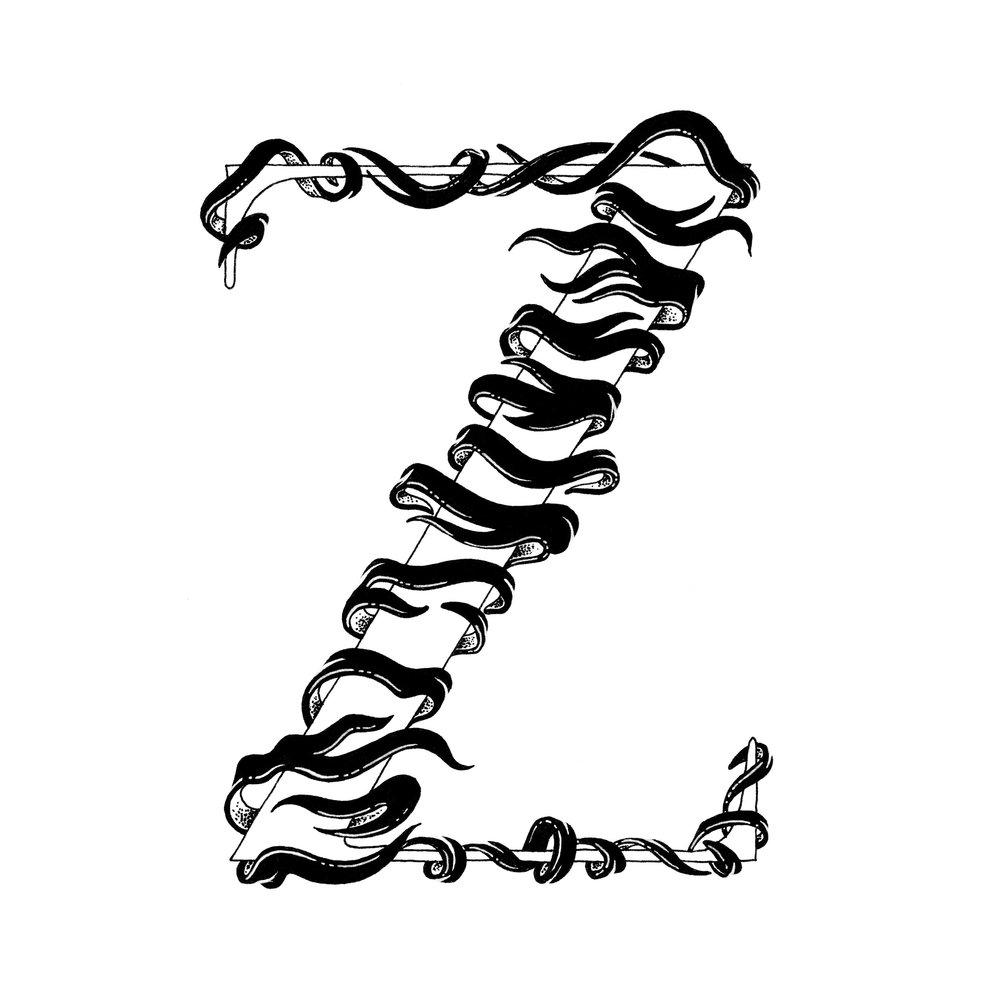 Z_01-web.jpg