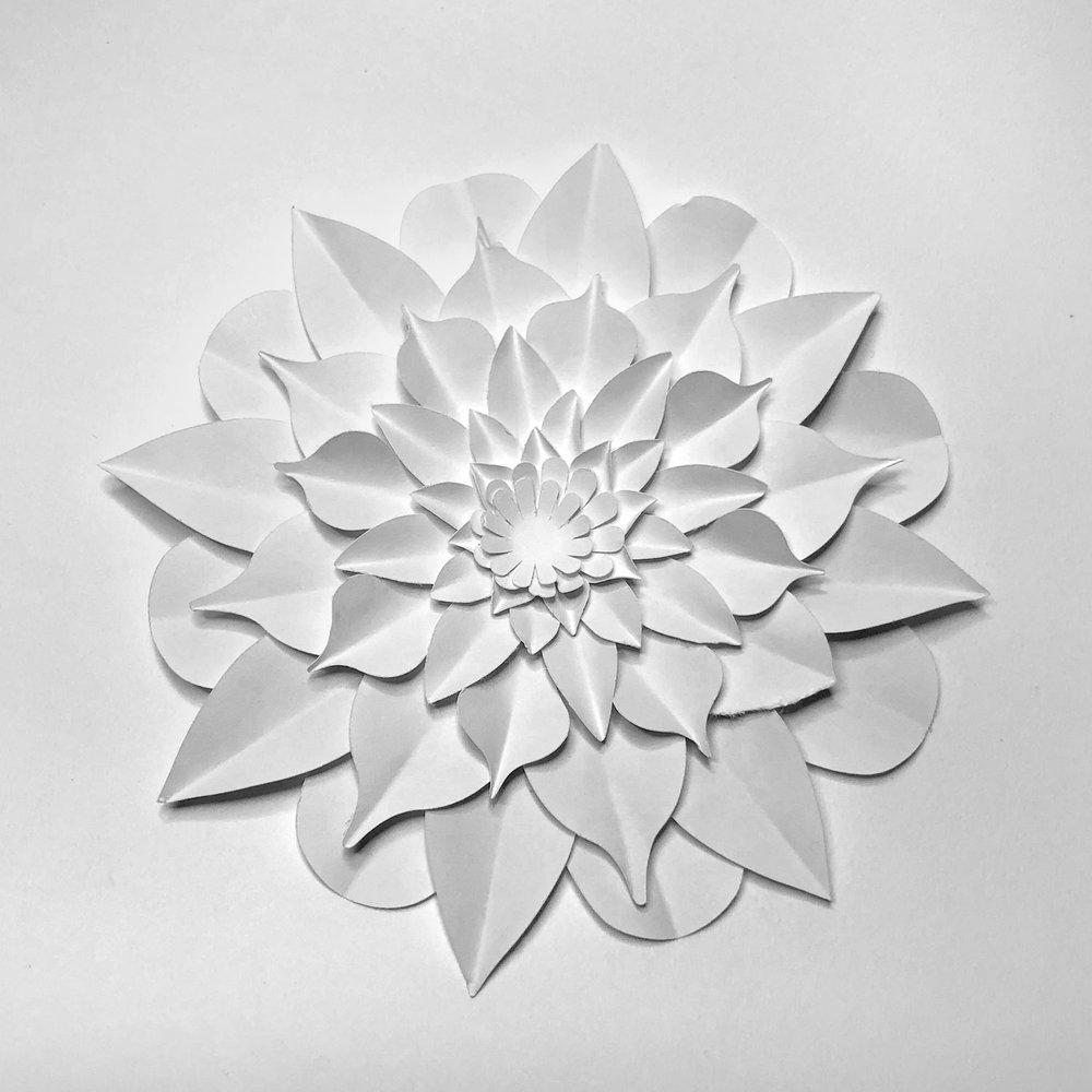 Flower Garden - simoneone