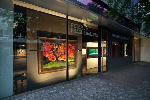 peter lik gallery in prague landscape photography and blog land