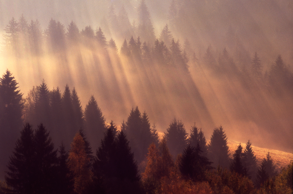 Sound of the Sun, Orava, Slovakia