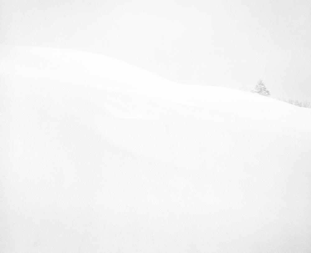 White 3, France, 2013