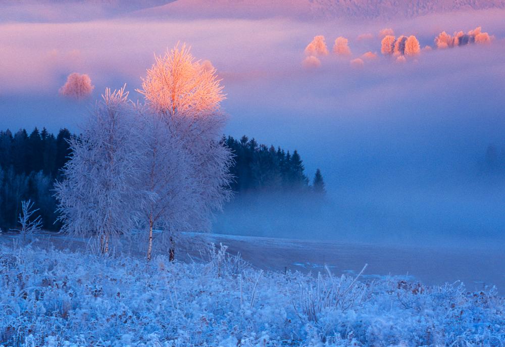 Winter Charm, Detvianska Huta, Slovakia
