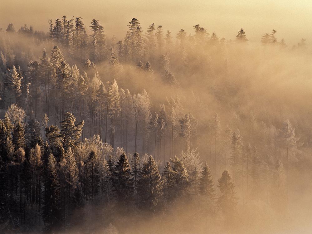 Mist Performance II, Spisska Magura, Slovakia