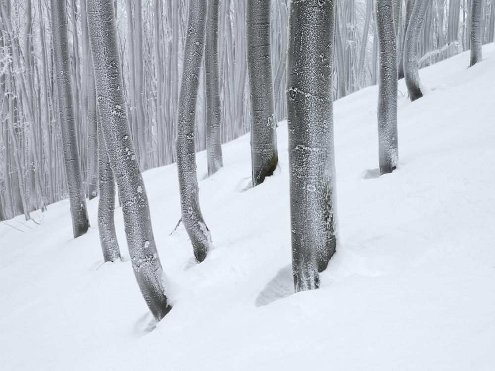Winter Mood, Carpathians, Slovakia