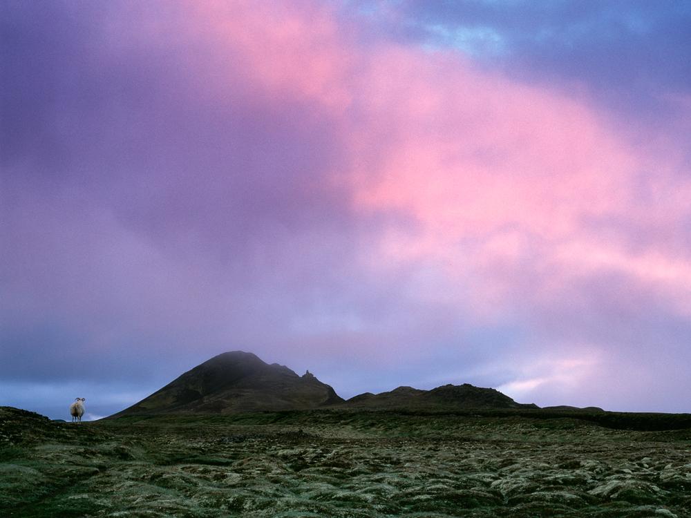 Iceland_2010_005_Web_1000.jpg