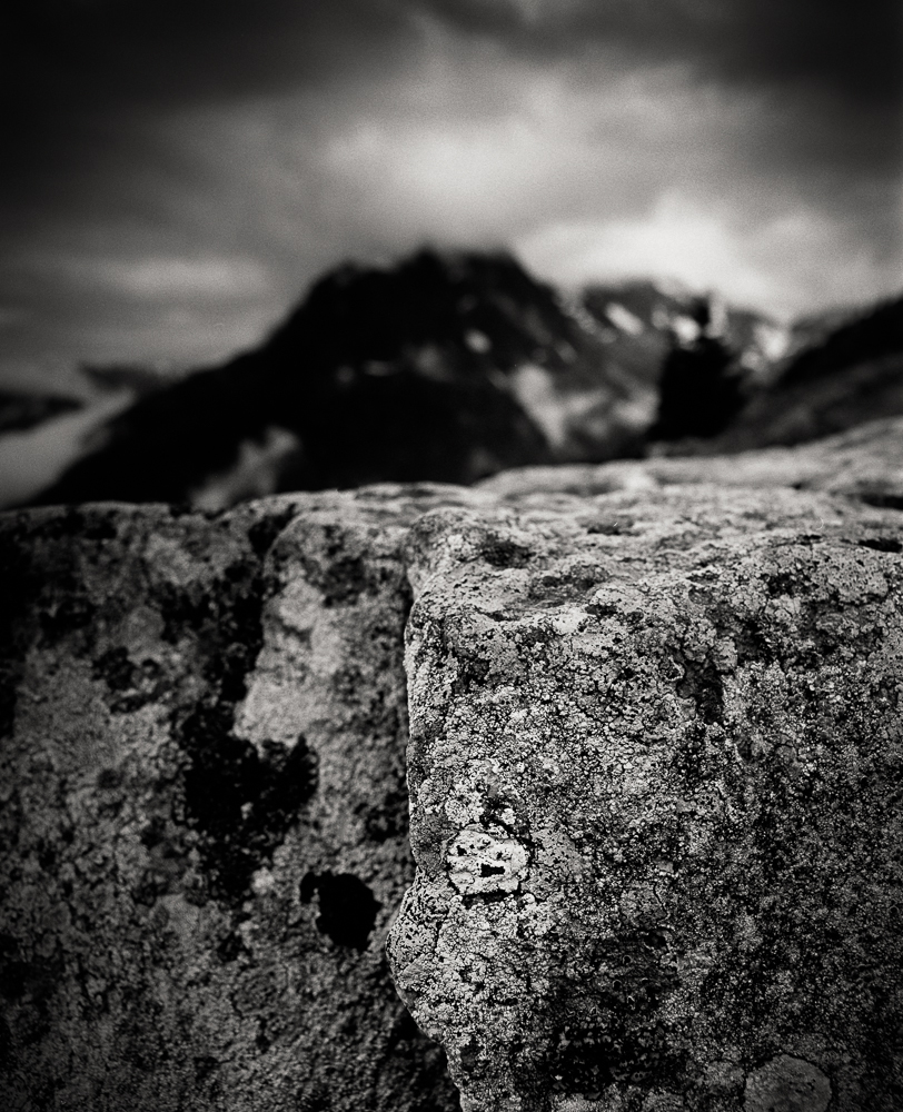 Title: Small World 2, Camera: Mamiya RB 67 Pro SD, Lens: Sekor 50 mm, Film: Kodak T-Max 100, Exposure: 1/30, f 22, Vallorcine, France, 2014