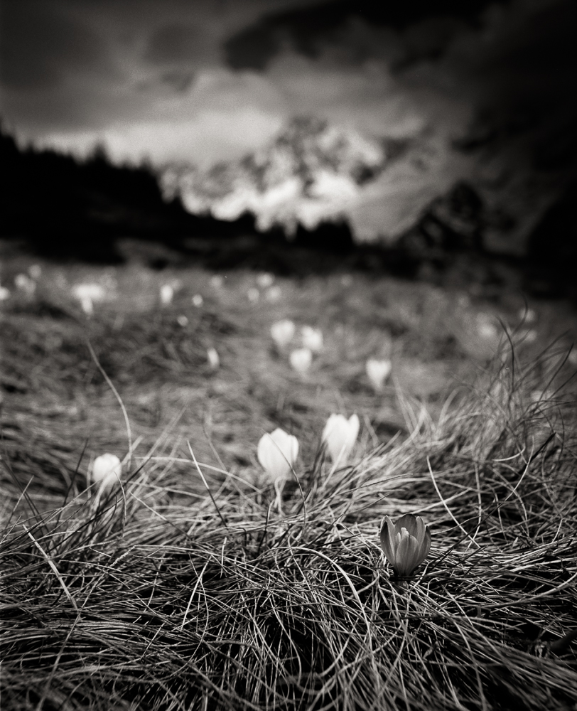 Small World 18, Les Houches, France, 2015.jpg