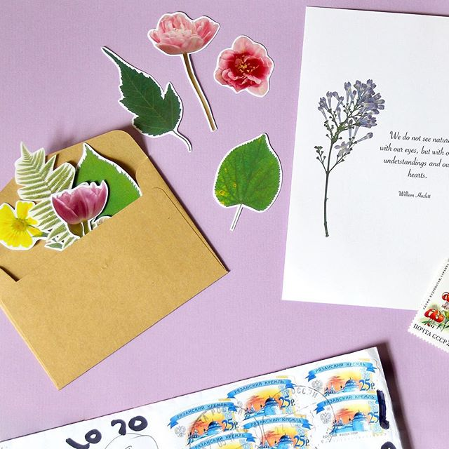 Happy Sunday! ☀️ I just got home after a lovely picnic in Richmond Park with some friends 👒 and found something rather lovely (and very on theme with the day I just had 🌿) waiting for me 💌 Thank you @irina.birdie for the gorgeous stickers 😍 Can't wait to share them with all my penpals 💌✨